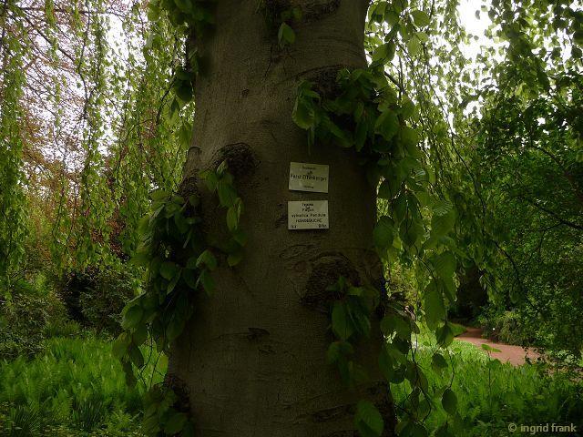 10.05.2013 -Botanischer Erlebnisgarten Altenburg