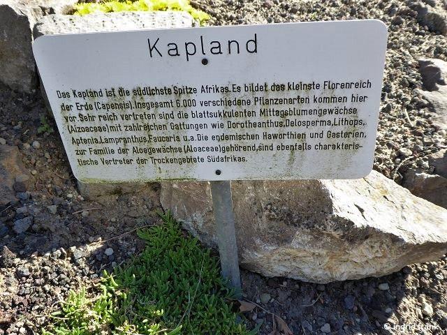 06.05.2018 - Botanischer Garten Universität Potsdam