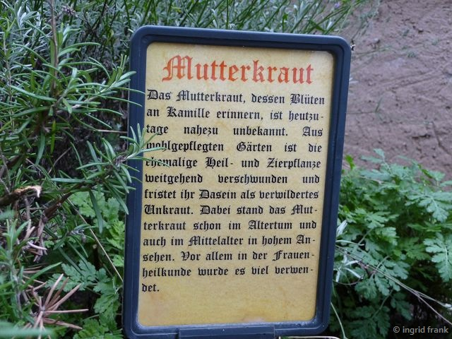 07.10.2016 - Im Kräutergarten der Reichsburg zu Cochem