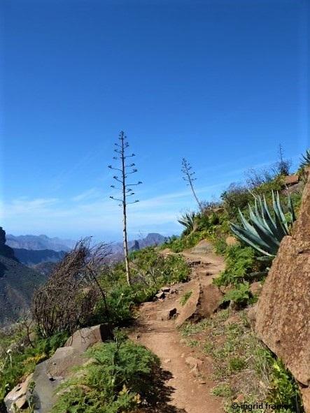 19.02.2020 - Gran Canaria