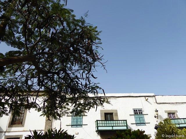15.02.2020 - Gran Canaria, Telde