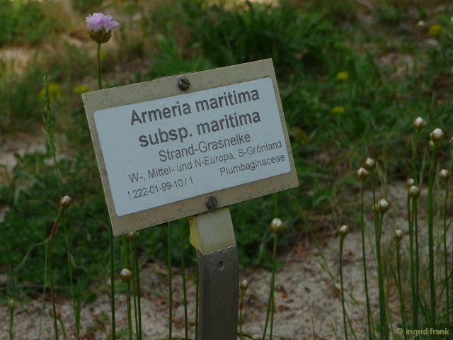 30.04.2014 - Botanischer Garten Berlin