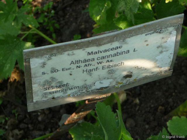 21.09.2015 - Hohenheimer Gärten