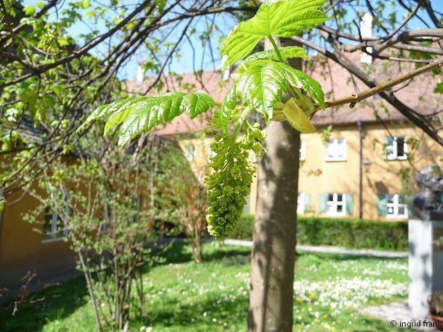 17.04.2011 - Augsburg, Fuggerei