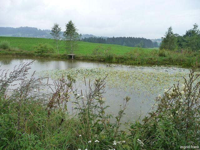 13.08.2010 - Kräutergarten Artemisia bei Stiefenhofen