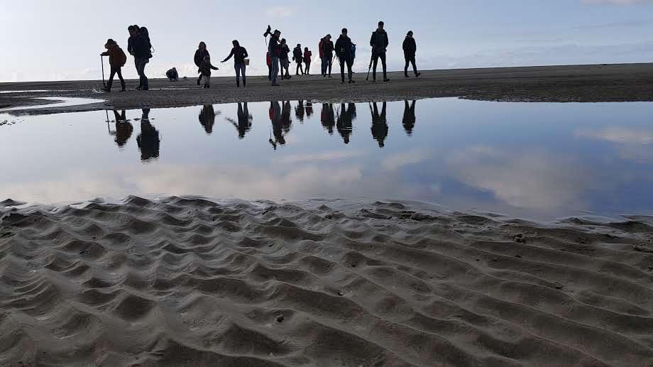 Activité et sorties nature en Baie de Somme