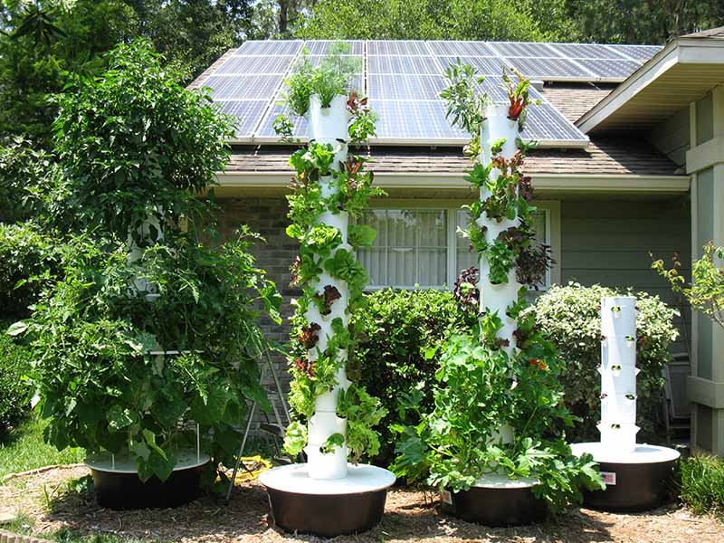 Affordable Healthcare as low as $55 a month! www.ajoaharris.towergarden.com