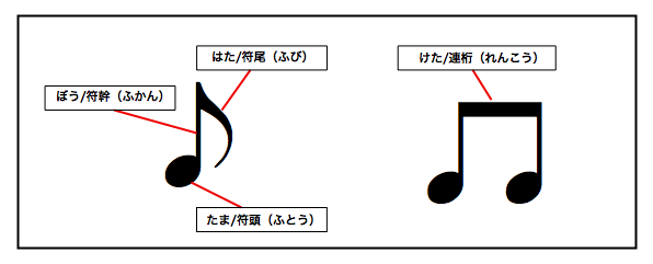音符の各部名称