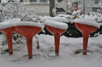 paisaje con nieve en el jardín