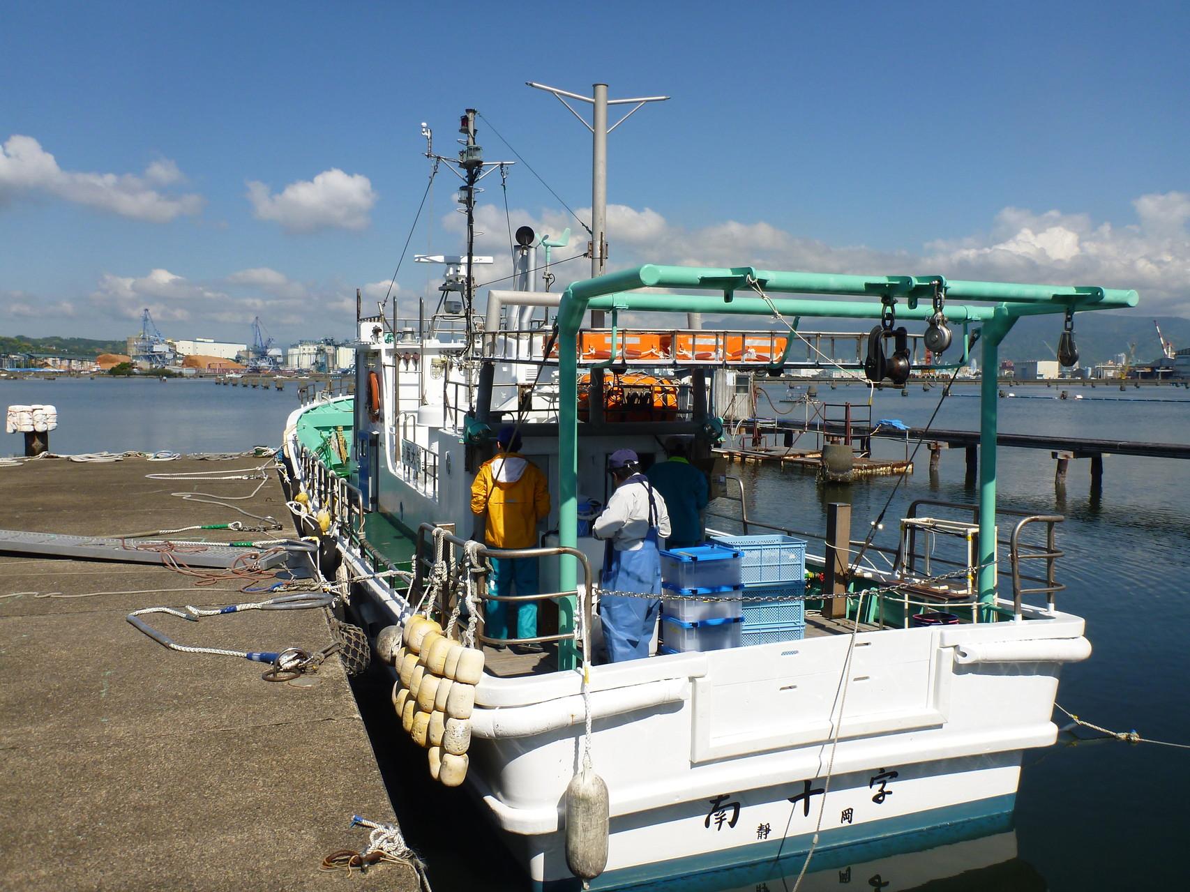 沿岸調査(清水港)