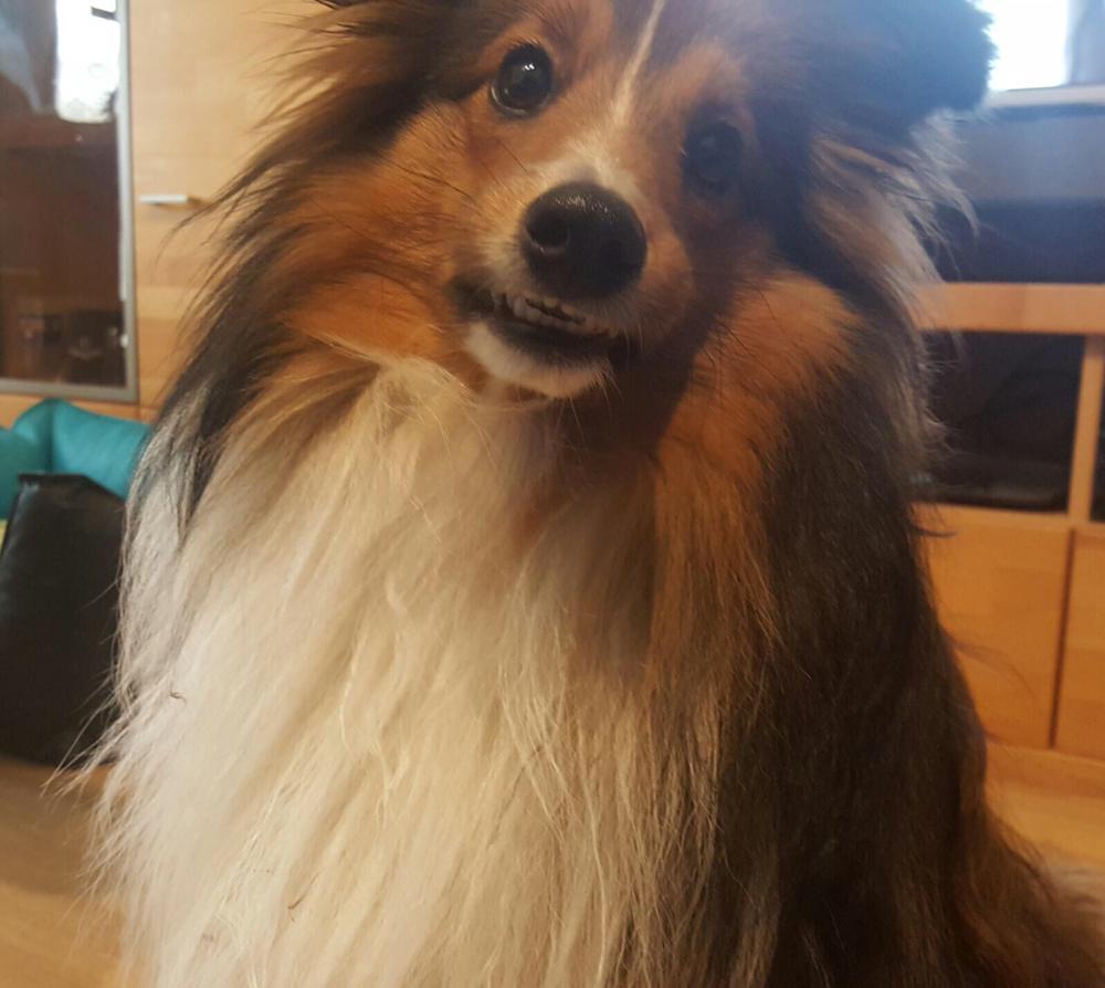 """Mäx """"DJDiesel"""" mit seinem goldigen Lächeln!"""