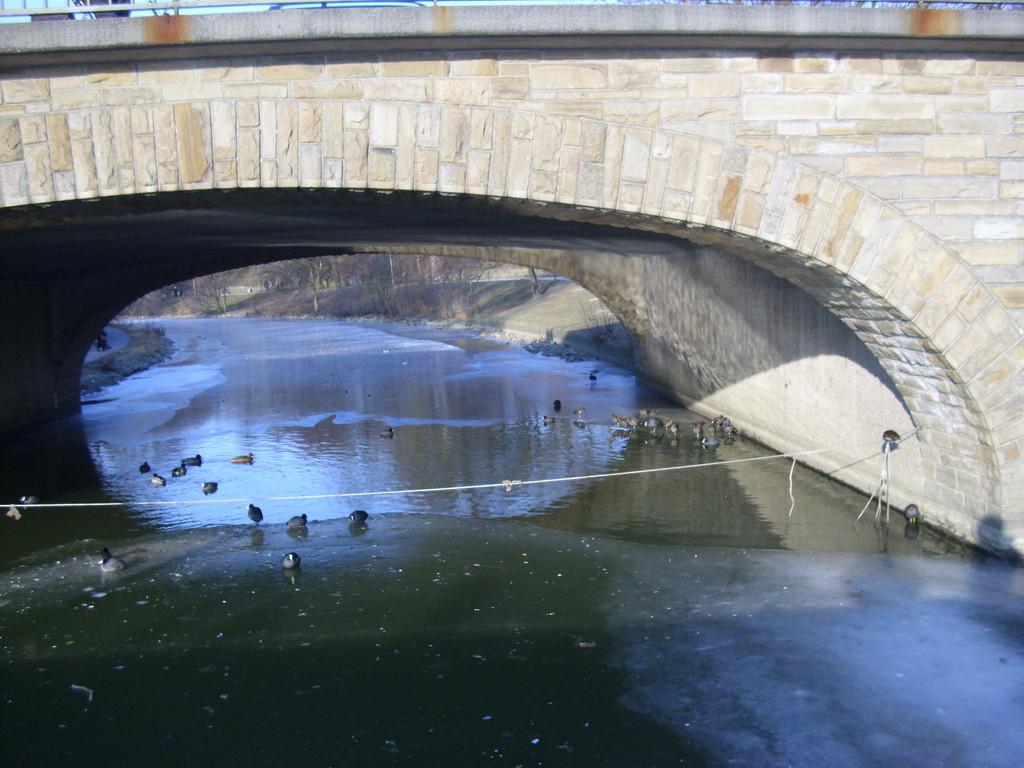 An der goldenen Brücke ( Aasee), WK