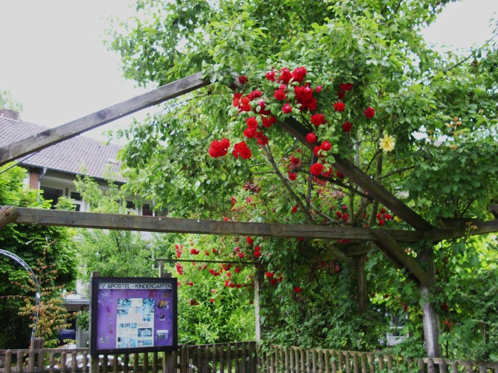 Blumengruß aus Münster , WK