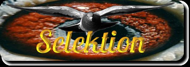 Weitstreckentauben-Selektion