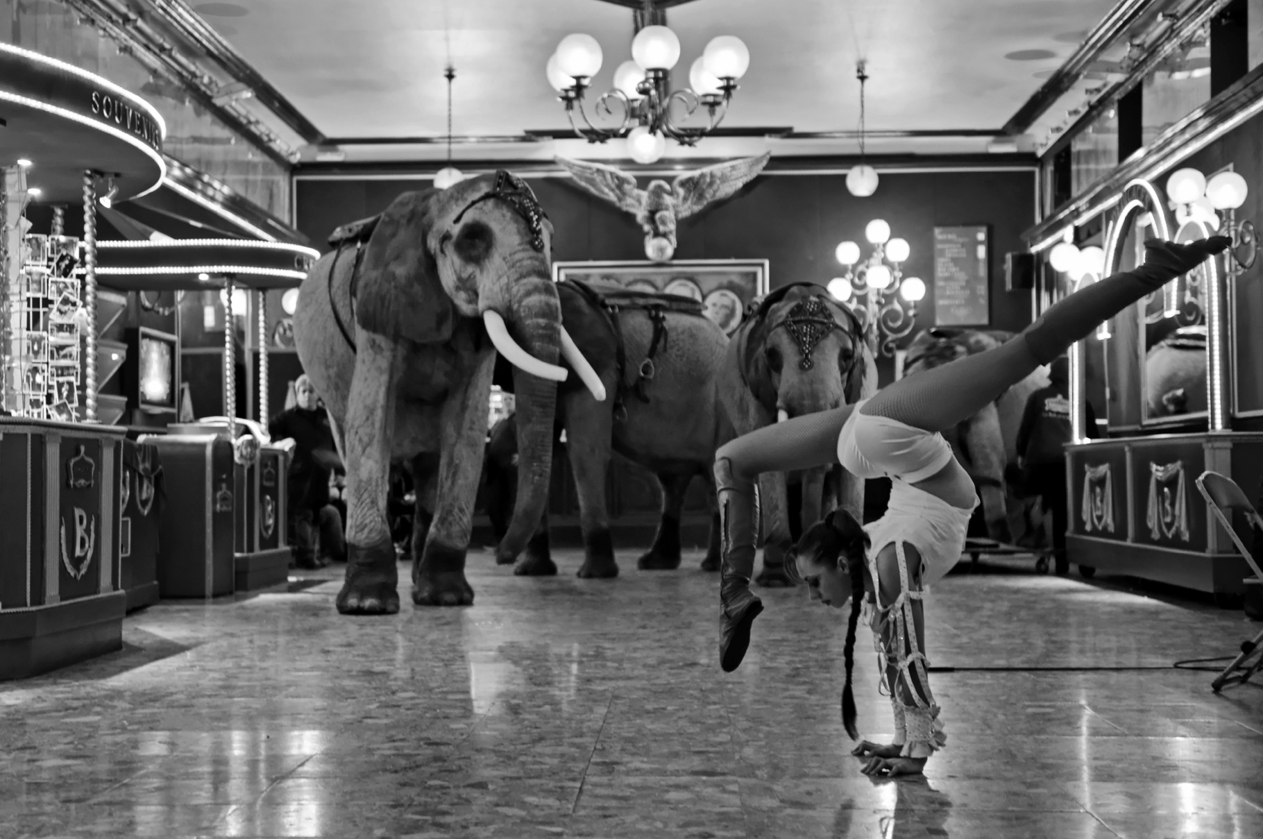 L'Acrobate et l'Elephant, 2014. 60 x 90 cm, ed. 8 I 80 x 120 cm, ed. 6