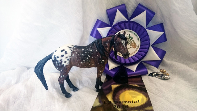 Dixie, Champion of the Schleich/CollectA Cust section, LS Salzatal 2016, Photo by Chiara V.