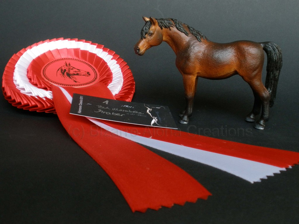 Marabella; 5th Place Schleich Cust Champions, LS Hannover 2011