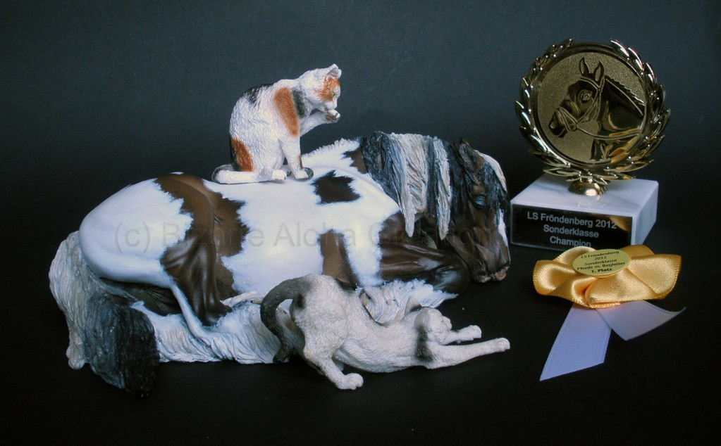 Melody, Champion of the Special Classes, Cust & Resin, LS Fröndenberg 2012