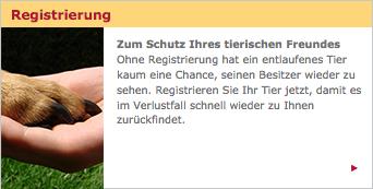 Registrierung bei Tasso