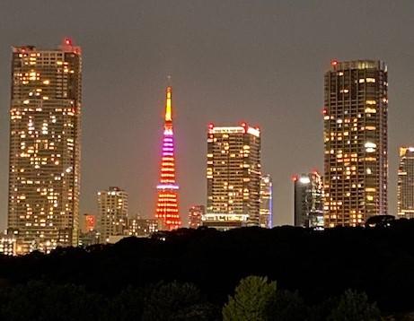 事務所の外から見るある日の東京タワー