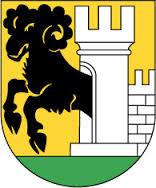 Schach in Schaffhausen
