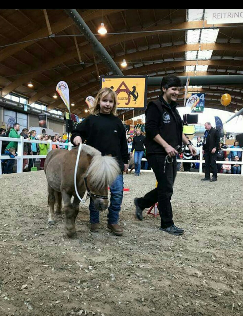 """Pferd Bodensee 2018, Vorführung mit Jessie von den Allgäuer Kleeblättern und """"Winston"""""""