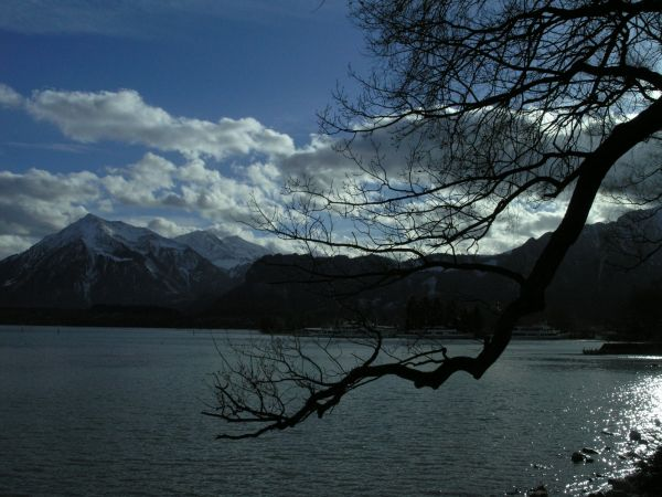 Am Thunersee 1
