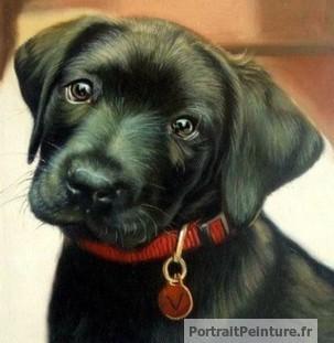 peinture-portrait-chien-animal