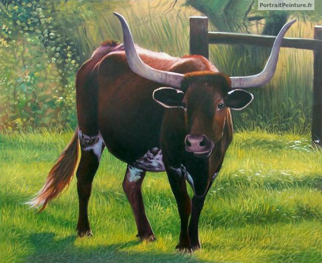 portrait-animalier-vache