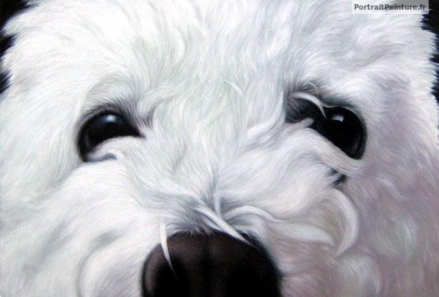 portrait-chien-peinture-gros-plan
