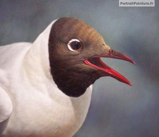 peintre-animalier-oiseau-portrait