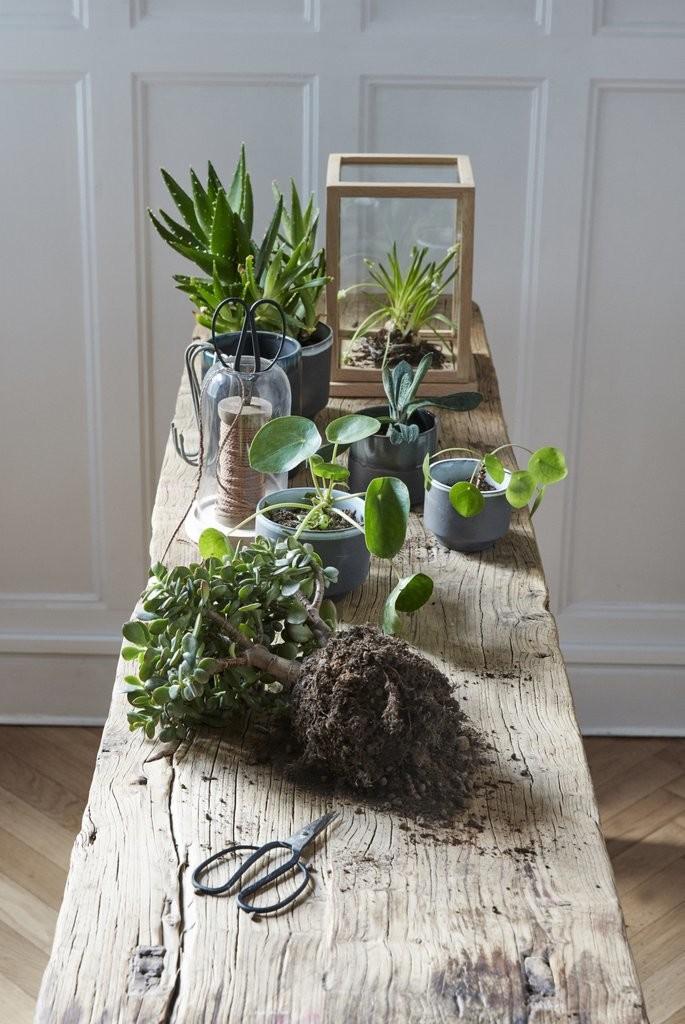Hübsch Interior - Verliebt in Zuhause! ♥ Online Shop Home & Living