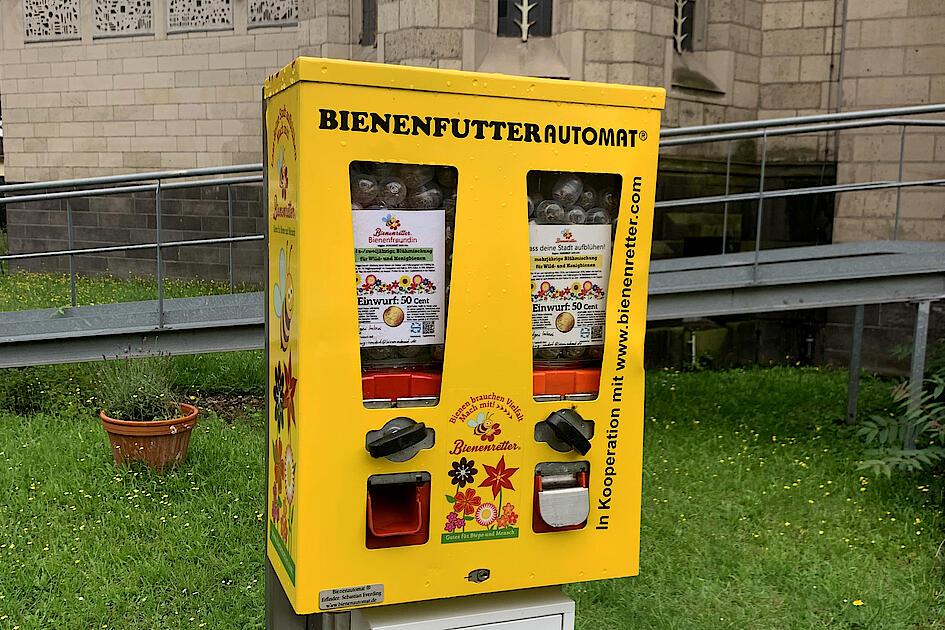 Vor St. Ludger in Neudorf gibts jetzt Bienenfutter