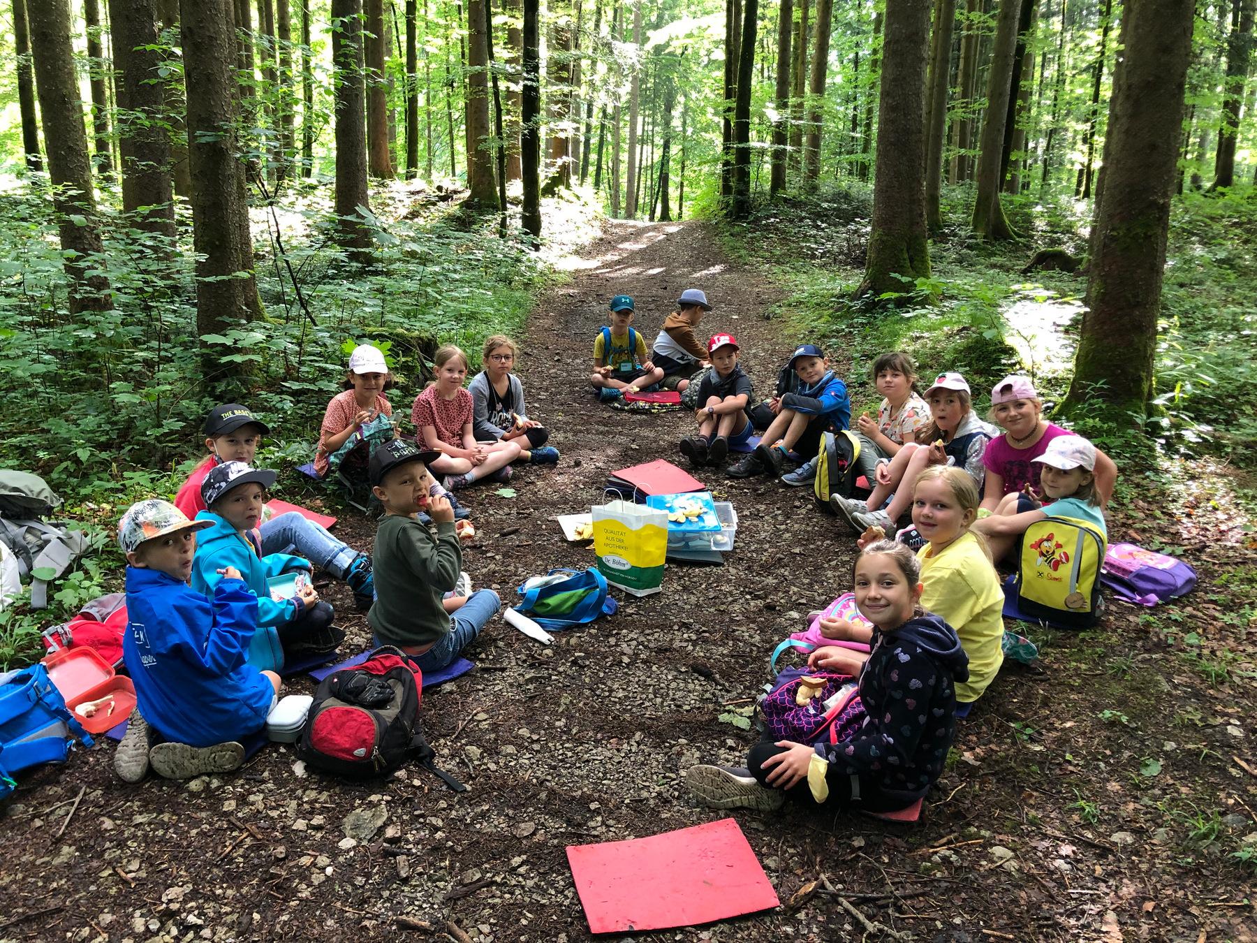 Waldtag der 2. Klasse