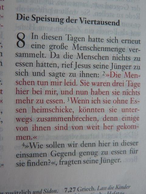 Red-Letter-Editon: Alle worte Jesu in Rot geschrieben!
