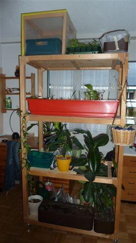 Zuerst Hamstergestell nach Mass - nun Pflanzengestell