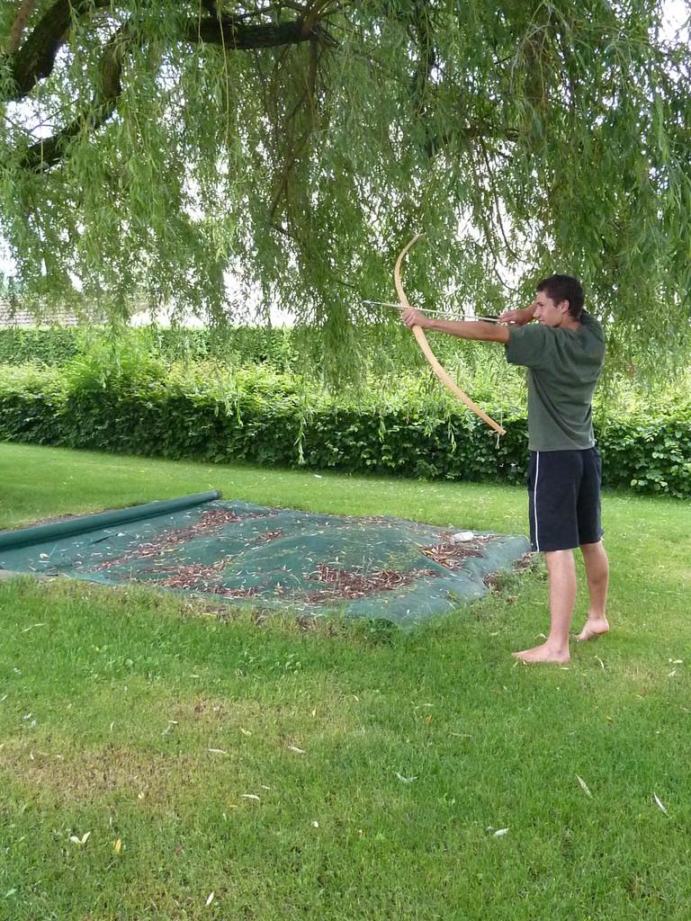 David als Gärtner fällt einen Eibenbaum, bringt Äste mit nach Hause,