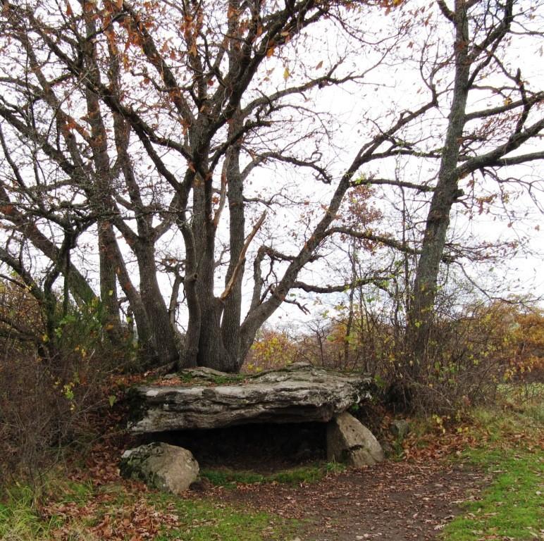 dolmen de Saillans