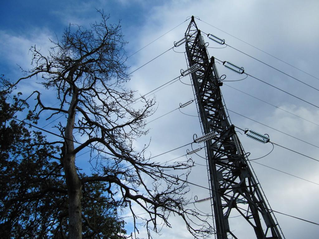 bizarre, un arbre mort près de la ligne à haute tension....