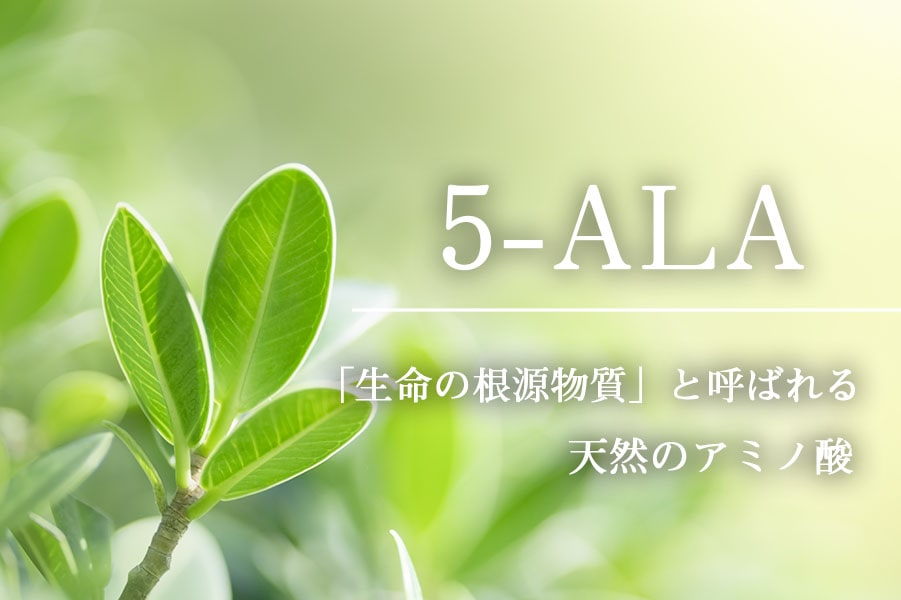 5-ALAショップ 5-ALA ファイブアラ 5ALA 5アラ