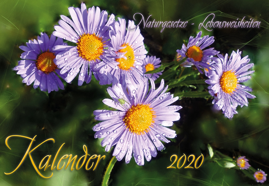 Naturgesetze, Lebensweisheiten, Kalender 2020
