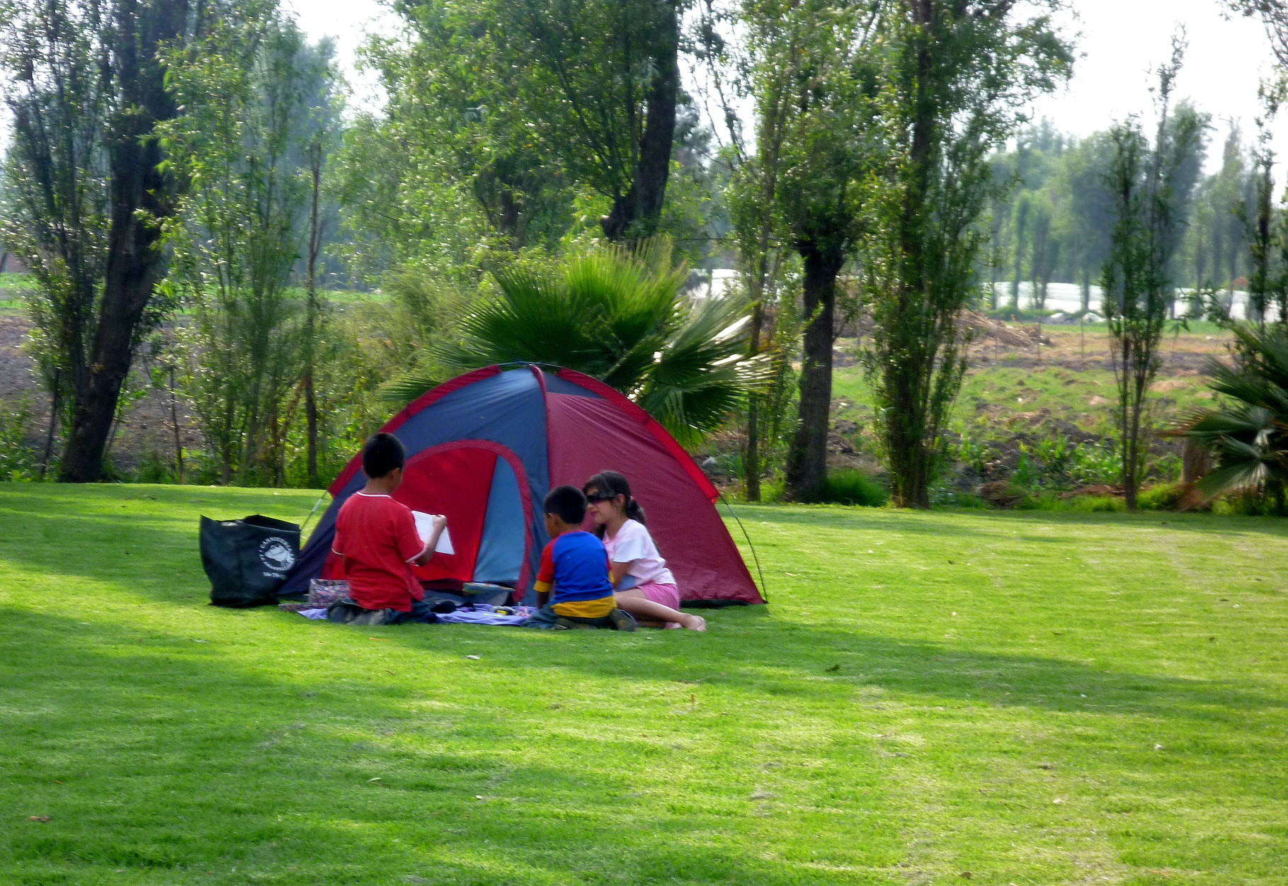 Se ha demostrado que los niños que tienen contacto con espacios verdes mejoran sus habilidades para prestar atención.