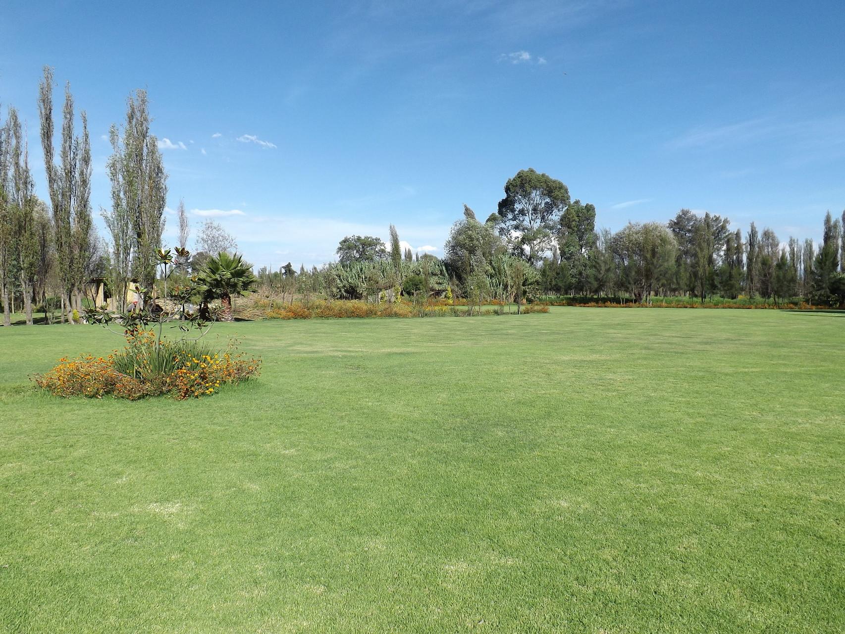 El área verde abarca aproximadamente una hectárea.