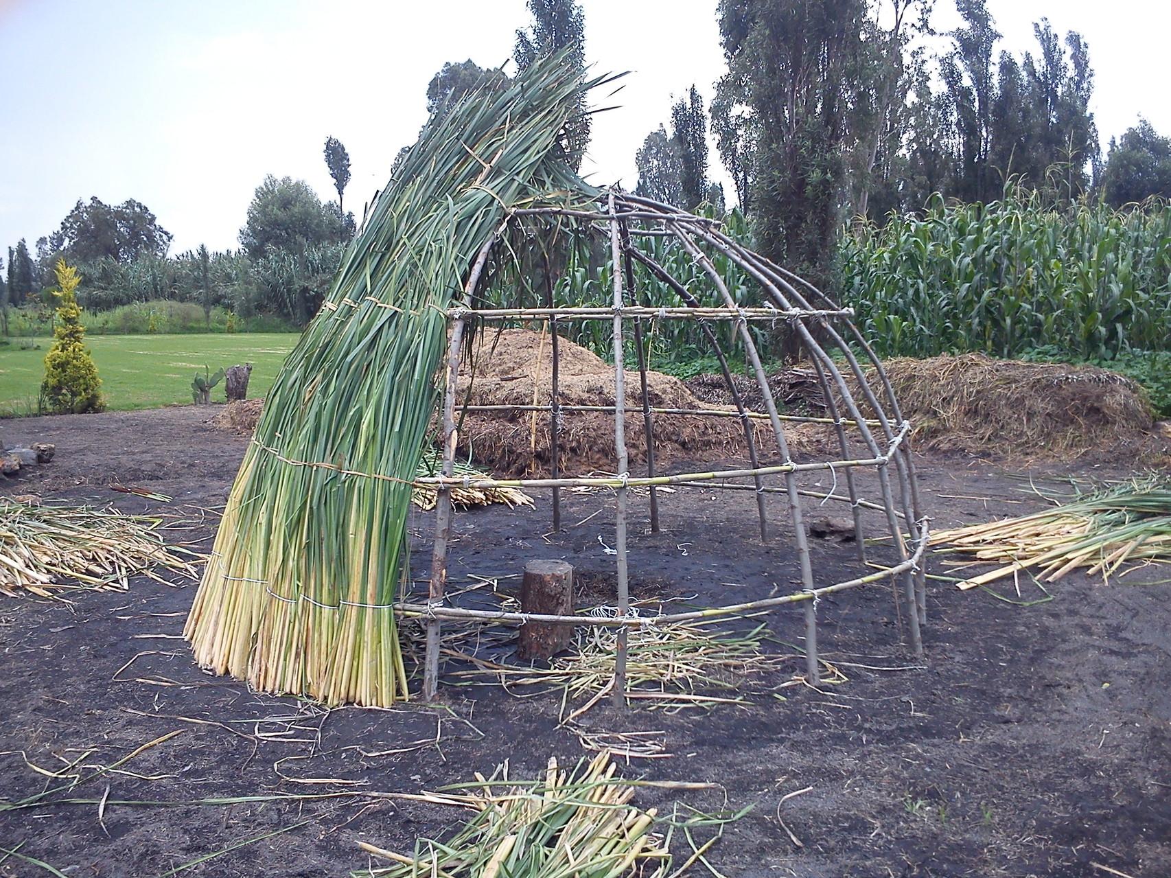 El temazcal autóctono es construido sobre una estructura a base de ramas en forma de domo.