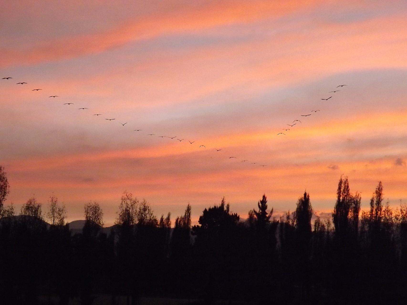 Dependiendo de la época podrás disfrutar de los diferentes matices que el cielo nos ofrece.