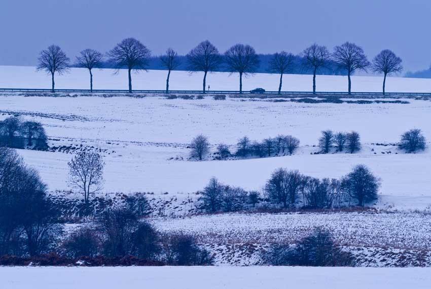 Les petites routes,  à travers la campagne Picarde, menant à la Baie de Somme, offrent en toutes saisons des paysages de charme