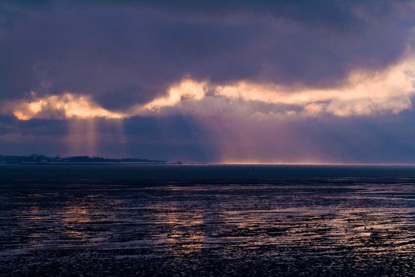 La Baie de somme, une baie où les lumières sont en perpétuel changement, lieux où les écosystèmes sont très riches et variés