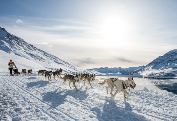 Suivez la Grande Odyssée Savoie Mont-Blanc