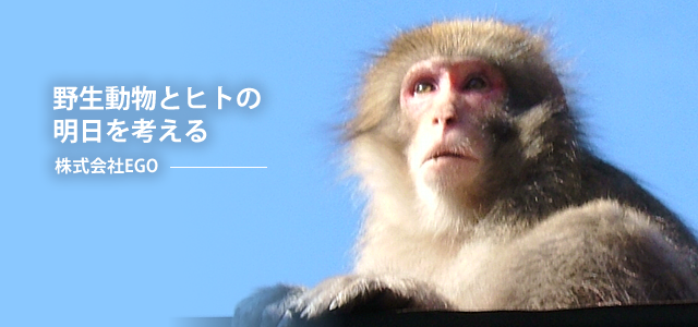 野生動物とヒトの明日を考える・株式会社EGO