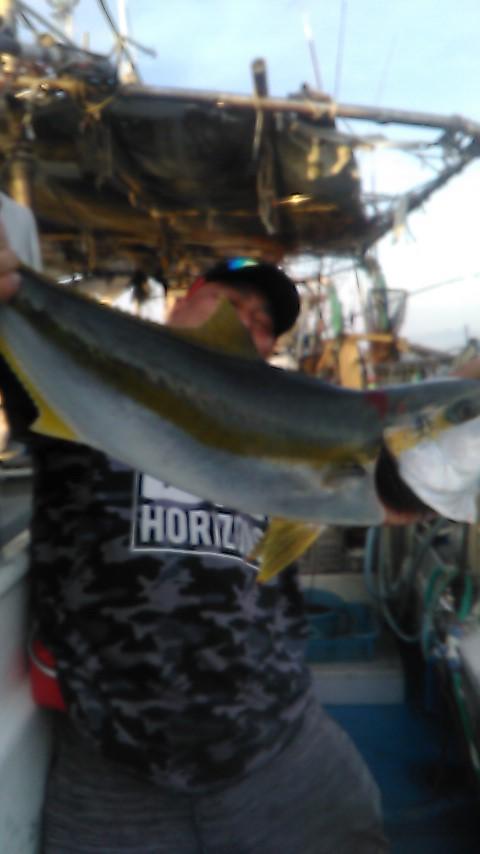大きなひらまさ。釣り上げるのに30分くらいかかったそうです。すっごい°˖✧◝(⁰▿⁰)◜✧˖°